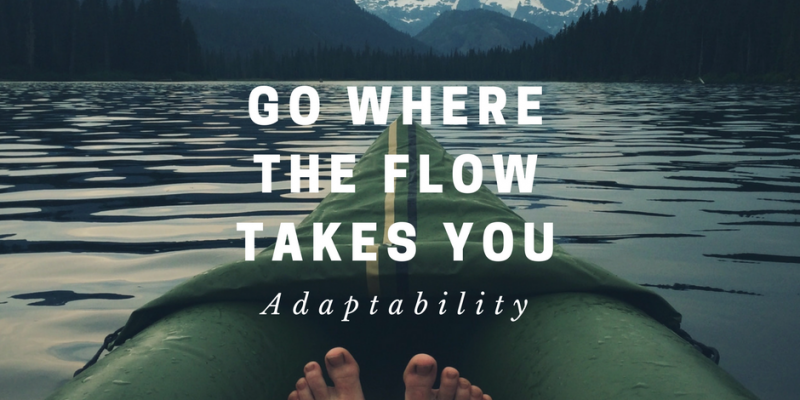 Adaptability – Why It Is A Good Habit Not To Plan